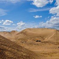 почти пустыня :: Galina