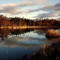 Утро на реке.. :: Эдвард Фогель