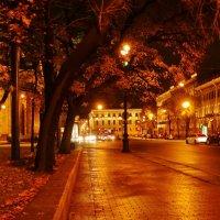 Улица. :: Владимир Гилясев