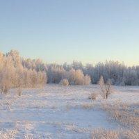 Зимним утром :: Андрей Кузнецов