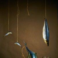 4 fish. Etude... :: Максим Авксентьев