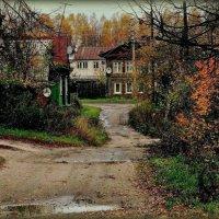 Поздняя осень :: Надежда Бахолдина