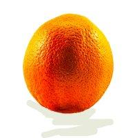 апельсин :: Александр Альтшулер