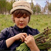 Мальчик с папоротником :: Кай-8 (Ярослав) Забелин