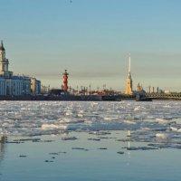 ..по реке Неве... :: Владимир Гилясев