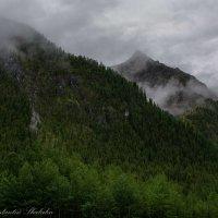 над горами туман,,, :: Константин Шабалин