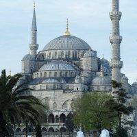 Стамбул Мечеть Султанахмет :: Swetlana V
