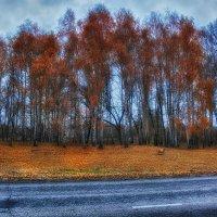 Осенние сумерки :: Сергей