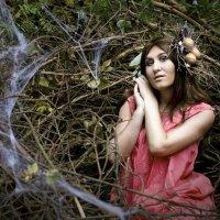 Сказочный лес :: Илона Панарина