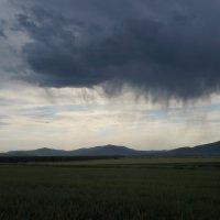 дождь :: Alexandr Staroverov