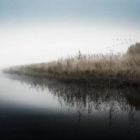 Озеро в тумане :: Михаил Александров