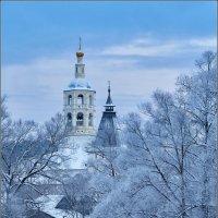 Боровский монастырь :: Валерий Шейкин