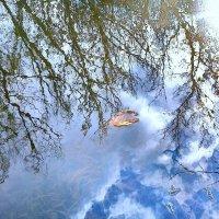 Уж небо осенью дышало... :: Мария Богуславская