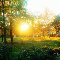 осеннее солнце.... :: Александра Полякова-Костова