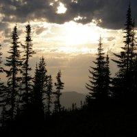 Утро в горах :: Андрей