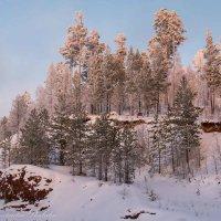 лес перед закатом :: Константин Шабалин