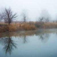 Дыхание тумана :: Annet-T