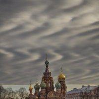Спас на Крови. :: Наталья Рыжкова