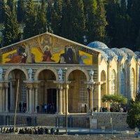 Иерусалим. Гефсиманская базилика. :: Игорь Герман