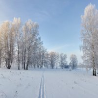 февраль :: Николай Мальцев