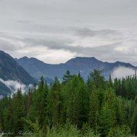 в горах после дождя :: Константин Шабалин