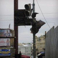 блестящей перспективы P.S! :: sv.kaschuk
