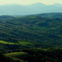 Монтальчино, Тоскана. Солнце село. Конец октября. +26 :: Виктор | Индеец Острие Бревна