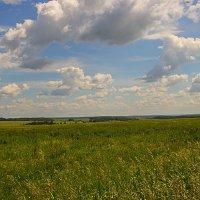 Владимирская область :: Бронислав Богачевский