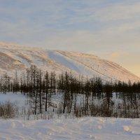 Талнахские горы. Норильск. :: Витас Бенета