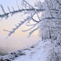 Январским днём на Енисее :: galina tihonova