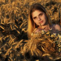 GOLDEN-GLIMMERS GIRL :: Igor Veter