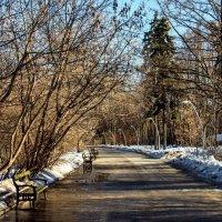 По дороге ... :: Kirill