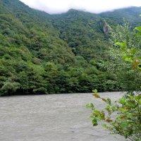 Абхазия ...река Бзыбь :: Светлана