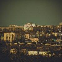 Эдельвейс :: Дмитрий Чернов