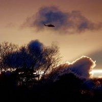 В закатном небе :: Natalia Harries
