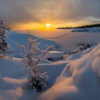 Пушистый снег. :: Фёдор. Лашков