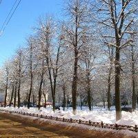 После снегопада. :: Михаил Попов