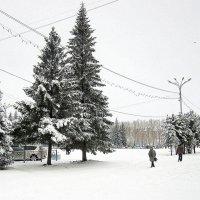 На город выпали осадки . :: Мила Бовкун