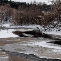 Реки февральское ненастье... :: Лесо-Вед (Баранов)