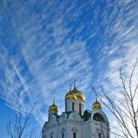 екатерининский собор :: Елена