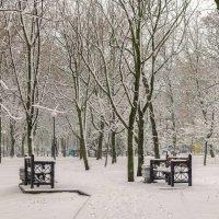 Снегопад в историческом сквере :: Константин Бобинский
