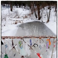 таинственные привязочки из целлофановых отрезочков :: Natalia Mihailova