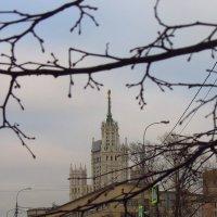 Мой город :: Андрей Лукьянов