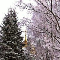 Сквозь февраль :: Елена Третьякова
