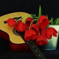 Красные  тюльпаны... :: Natalia