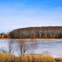 Смолнщина в феврале :: Милешкин Владимир Алексеевич
