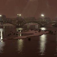 В парке ночь :: Михаил Тищенко