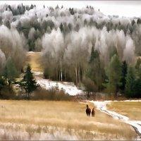 зима* в средней полосе России :: Владимир Беляев ( GusLjar )