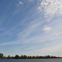 Облака на голубом небе над берегом реки :: Сергей Тагиров