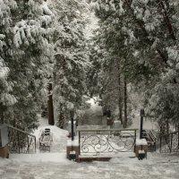 Зимние зарисовки :: Геннадий Кульков